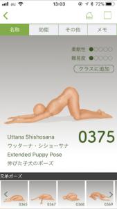 猫の伸びのポーズ
